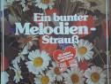Ein bunter Melodien-StrauB