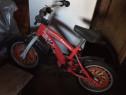 Bicicleta pentru copii!