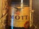 Sampanie Mott