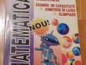 Culegere de probleme clasa a V-a de Viorica Elena Carbunaru