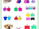 Realizam medalioane personalizate pentru animale de companie
