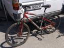 Bicicleta adulți