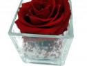 Trandafir Natural Criogenat 8cm în mini vaza de sticlă