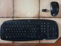 KIT / SET Tastatura & Mouse Logitech MK 250 Wireless