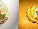 4249-2 Insemne militare chipiu Romania socialista metal auri