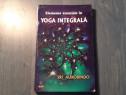 Elemente esentiale in yoga integrala de Sri Aurobindo