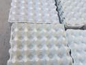 Cofraje natur oua 30 buc, pentru izolatii sau izolare fonica