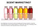 Odorizant / Esenta 100% , pentru aparatele de parfumare