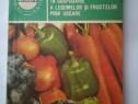 Conservarea in gospod. a legumelor si fructelor prin uscare