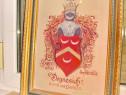 B552-Scutul heraldic medieval Familia Doynesich Bosnia