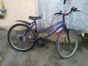 Bicicleta copii și adulți dama