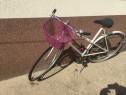 Bicicleta dama clasica