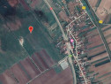 Teren extravilan Beharca 2390 mp, Dolj- 3001405