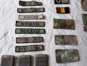Grade militara și embleme