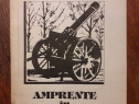 Amprente in memorie - Aurel Negrila / R3S