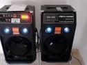 Boxe audio set 2 buc. una activă una pasivă