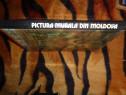 Pictura murala din Moldova sec XV-XV -text Vasile Dragut