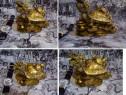 Winomo, testoasa dragon cu pui, pentru noroc de de urmasi