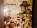 Campulungul in marturiile vremii - Adrian Savoiu (2008)