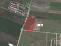 Teren intravilan pe DN Arad-Oradea 31000mp - 14245
