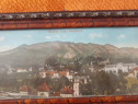 Tablou panoramic Stațiunea Sinaia