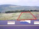 Teren agricol extravilan 5790 mp