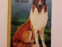 Lassie se-ntoarce acasa - Eric Knight / R8P2S