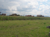 Harman,parcele500 mp,intravilan constructii case