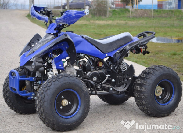 atv 125cc raptor quad kxd 004 import gemania 800 eur. Black Bedroom Furniture Sets. Home Design Ideas