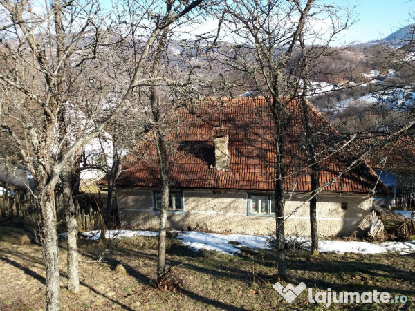 Vanzare  casa  2 camere Hunedoara, Mesteacan (Brad)  - 40000 EURO