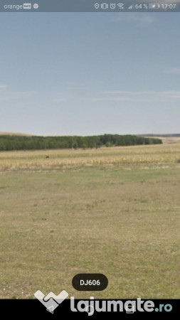Vanzare  terenuri agricol  100 ha Dolj, Predesti  - 100000 EURO
