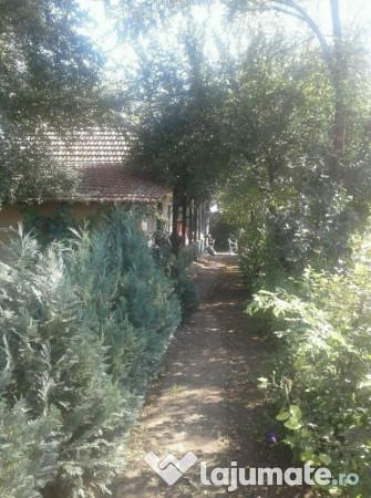 Vanzare  casa  3 camere Calarasi, Ileana  - 18000 EURO