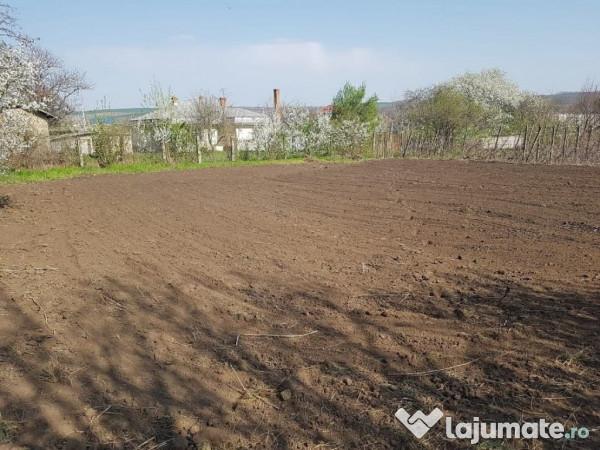 Vanzare  terenuri agricol  2100 mp Vaslui, Barlad  - 56700 EURO
