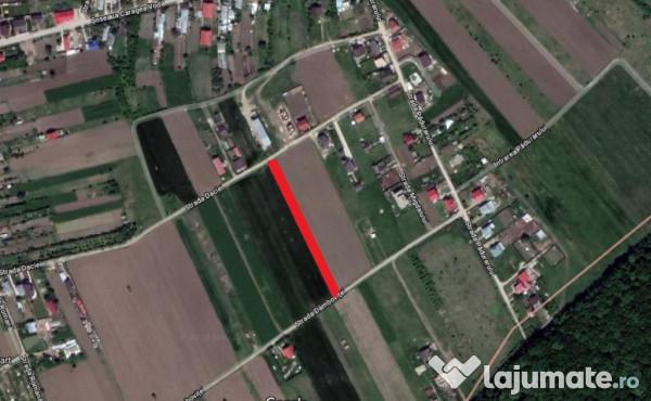 Vanzare  terenuri agricol  2222 mp Arges, Domnesti  - 39996 EURO