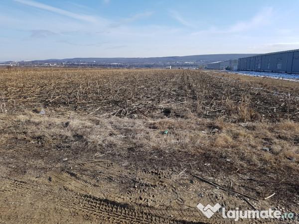 Vanzare  terenuri constructii  11.5 ha Arges, Maracineni  - 345000 EURO