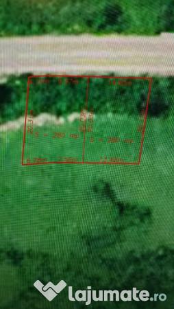 Vanzare  terenuri agricol  280 mp Caras Severin, Moldova Veche  - 6000 EURO