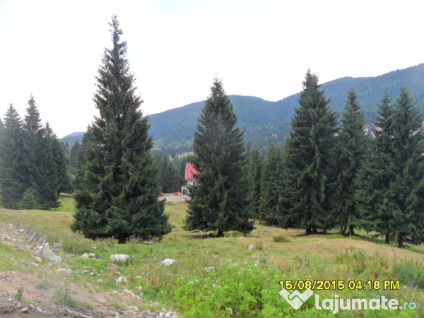 Vanzare  terenuri constructii  450 mp Bihor, Nucet  - 15750 EURO