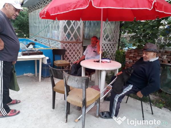 barbati din Oradea care cauta Femei divorțată din Alba Iulia Dating Site Lovoo Forum
